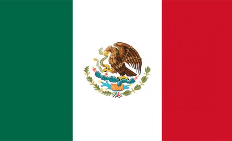 Pulque, Mezcal, Sotol, Bocanora, Raicilla et Tequila: le temps est aux agaves
