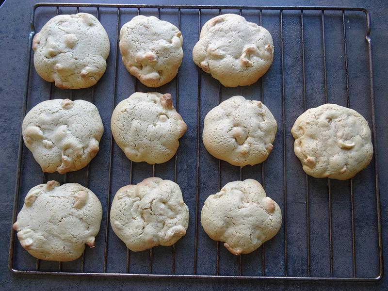 scookie au repos