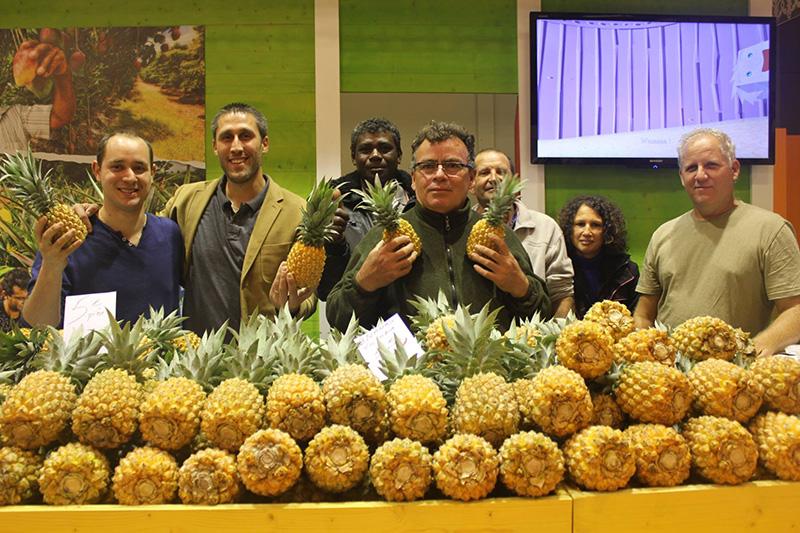 Arrangés de Ced Ananas Réunion